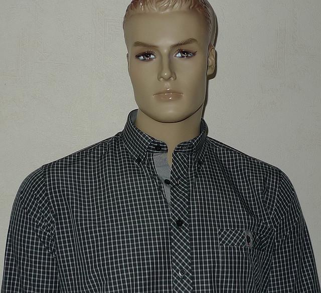 Приталенная рубашка Carlo Puccini