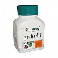 Гудучи (Макабугай, Амрита, Гилоя, Гилоэ), иммуномодулирующее средство, Guduchi (60cap)