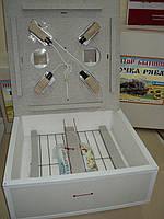 """Инкубатор для яиц """"Курочка ряба"""" - 130 с механическим переворотом и цифровым терморегулятором"""