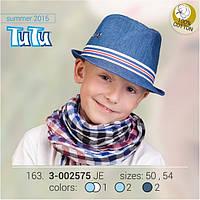 Стильная шляпа для мальчика TuTu арт. 163.3-002575