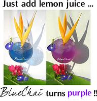 Уникальный лечебный Синий чай Анчан Тайланд