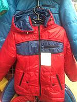 Куртка зі вставками пряма