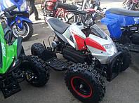 Электрический квадроцикл Profi HB-6 EATV 800