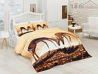 Cotton Castillo Сатин Постельное белье Двуспальный Евро комплект Хлопок 100% Турция