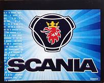 Купить брызговик Scania цветной 48*60