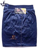 Штаны спортивные мужские AO Longcom, размеры XL-5XL, модель 0361-1, синие 001