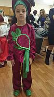 """Прокат Детский карнавальный костюм """"Буряк"""" на утренник, фото 1"""