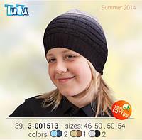 Шапка для мальчика TuTu арт. 3-001513