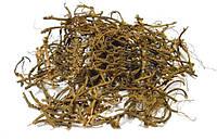 Копытень европейский корень 100 грамм (Ásarum europaéum)