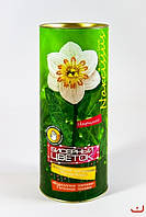 Бисерные цветы НАРЦИСС Danko Toys, Бц-03