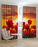 Фотошторы красные тюльпаны