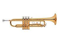 Труба MAXTONE TTC29L2
