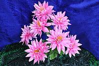 Искусственные цветы, букет астра (20 шт в упаковке)