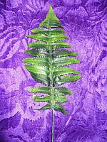 Искусственные цветы, лист лесного папоротника