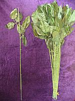 Ножка розы одиночная, 50  см, фото 1