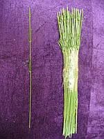 Нога гвоздичная, 30 см, фото 1