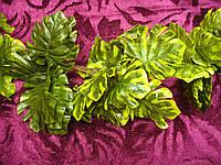 Лиана с листьями резными, фото 1