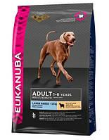 сухий корм для собак EUKANUBA Adult large lamb & rice 12 кг