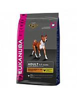 сухий корм для собак EUKANUBA Adult medium 15 кг