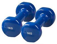 Гантели для фитнеса винил Спринтер 1 кг (пара)