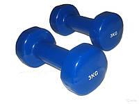Гантели для фитнеса винил Спринтер 3 кг (пара)
