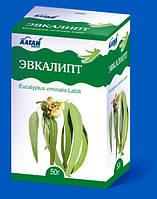 Фарм Групп, Россия Эвкалипт лист фиточай 50г (БАД)