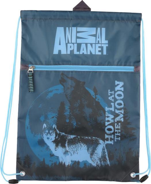 Сумка для обуви с карманом Kite AP15-601K Animal Planet