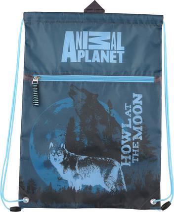 Сумка для обуви с карманом Kite AP15-601K Animal Planet, фото 2
