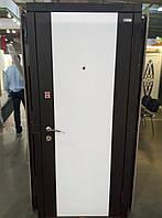 """Двери входные Модель """"Трэк"""" (комбинированный рисунок), фото 1"""