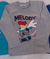 "Реглан для мальчика ""Fashion Melody"""