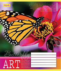Тетрадь 1Вересня 48 листов.линия.Бабочки