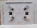 Инкубатор Курочка Ряба ИБ-120 автоматический, фото 3
