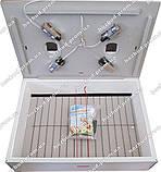 Инкубатор Курочка Ряба ИБ-120 автоматический, фото 2