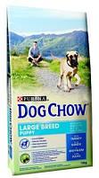 Dog Chow (Дог Чау) Puppy Large Breed Для щенков крупных пород с индейкой 14 кг