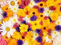 Отдушка Цветы с нотами бальзамов