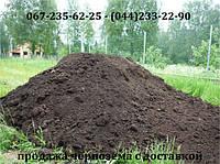Купить чернозем-землю для сада, огорода, фото 1