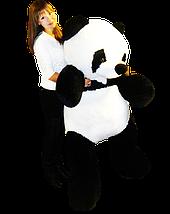Мягкая игрушка панда, большая   180 см, фото 3