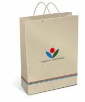 Пакет бумажный с логотипом (255х180х60 мм) №2
