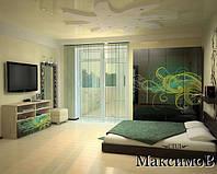 Шкафы и прихожие с рисунками на фасадах из стекла