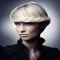 Укладка волос феном с мытьем и лечением волос патентованными препаратами(без использования косметики) до 15 см