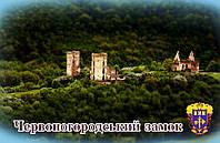 """Магніт (синій) """"Червоногородський замок"""" 55х90 мм"""