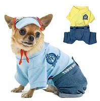 """Костюм Pet Fashion """"Микс"""" для собак, фото 1"""