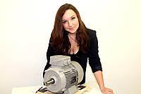 Электродвигатель АИР 80 A2  (Полесьеэлектромаш)