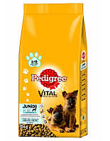 PEDIGREE Junior  Maxi Курица 15 кг