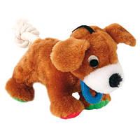 Trixie      TX-3616 собака с верев.хвостом (плюш)17см-игрушка для собак