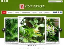 Аюрведические порошки ТМ Yogi Globals - лучшее от природы