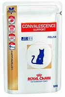 Лечебный корм для кошек Royal Canin Convalescence Supp Feline Pouches 100 г