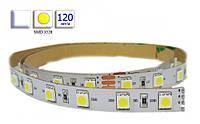 Светодиодная лента LED, SMD 3528, белый холодный, 120 шт/м, не влагозащищенная IP20