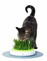Hagen  Grass Garden -Зеленая лужайка для кошек (50755)