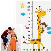 Наклейка ростометр Жирафик